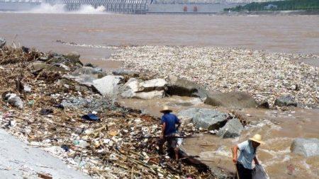 중국 토지오염 심각, 그래도 채소를 먹을 수 있나?