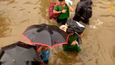 [영상] 인도, 네팔, 방글라데시, 홍수로 1200여명 사망