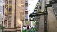 """""""중국 치매 할머니 아파트 14층서 벽 타고 집 탈출""""(영상)"""