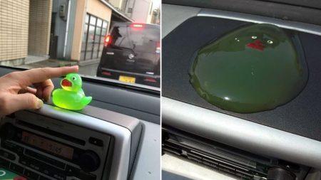 찜통더위가 이어지던 여름날 차 안에 있던 고무오리의 '최후'