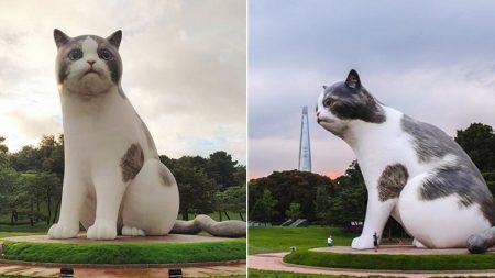 초대형 고양이가 서울 올림픽공원을 점령했다