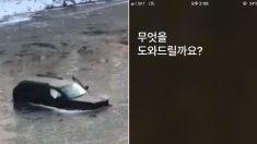 """""""시리야, 119에 전화해"""" 눈길에 미끄러져 강에 빠진 남성이 아이폰 덕분에 목숨을 구했다"""
