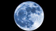"""어젯밤 """"유난히 예뻤다""""는 올해의 마지막 보름달 '콜드 문'"""