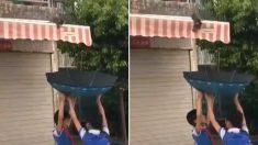 천막 지붕 위에 갇혀있는 아기 고양이 '우산'으로 구한 아이들