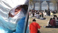 """""""제발…"""" 투표 끝낸 시민들이 한강공원에 바글바글 모였다"""