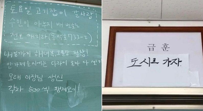 서울에서 전학생 온다는 소식에 경상도 어촌 고등학생들이 준비한 몰래카메라