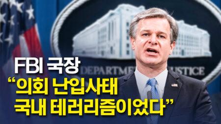"""크리스토퍼 레이 FBI 국장 """"의사당 난입사태, 국내 테러리즘이었다"""""""
