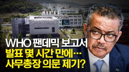 사무총장까지 갸우뚱하게 만든 WHO 코로나19 기원 조사 보고서