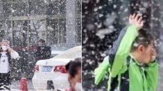 미세먼지 줄이려고 나무 잔뜩 심었다가 '꽃가루 폭탄' 맞고 있는 중국의 근황