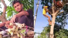 코로나 확진되자 가족들 위해 '나무 위'에서 자가격리한 인도 청년