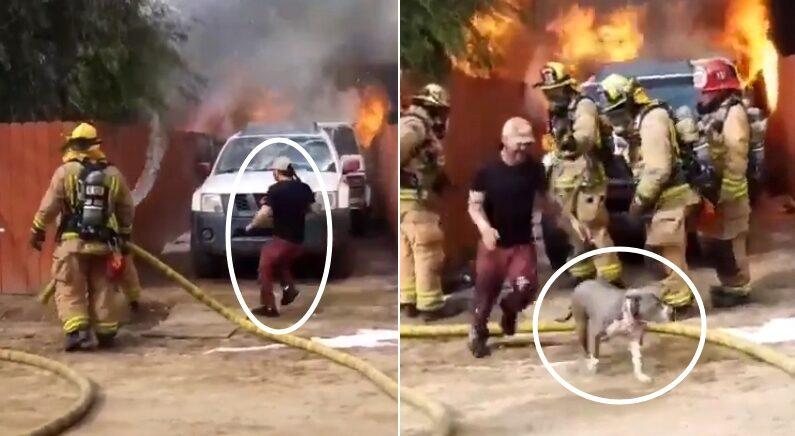 """""""당장 멈추세요!!!"""" 말리는 소방관들 다 뿌리치고 활활 '불타는 집'으로 돌진한 남성 (영상)"""