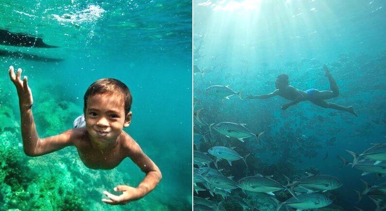 산소 없이 10분 넘게 바다 70m 아래까지 잠수해 '현실판 인어'라 불리는 '바자우 족'
