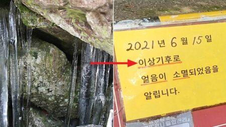 한여름에 고드름 열리는 '천연기념물' 밀양 얼음골 얼음이 소멸됐다