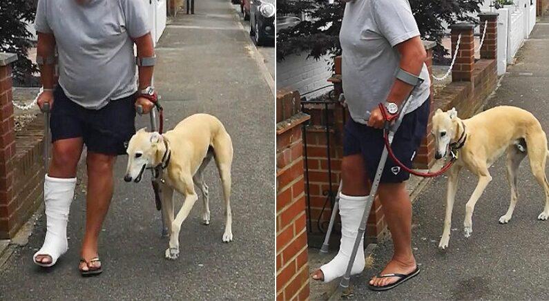 사랑하는 주인이 다리 다치자 똑같이 절뚝거리며 아픔 나누는 '공감능력 甲' 강아지